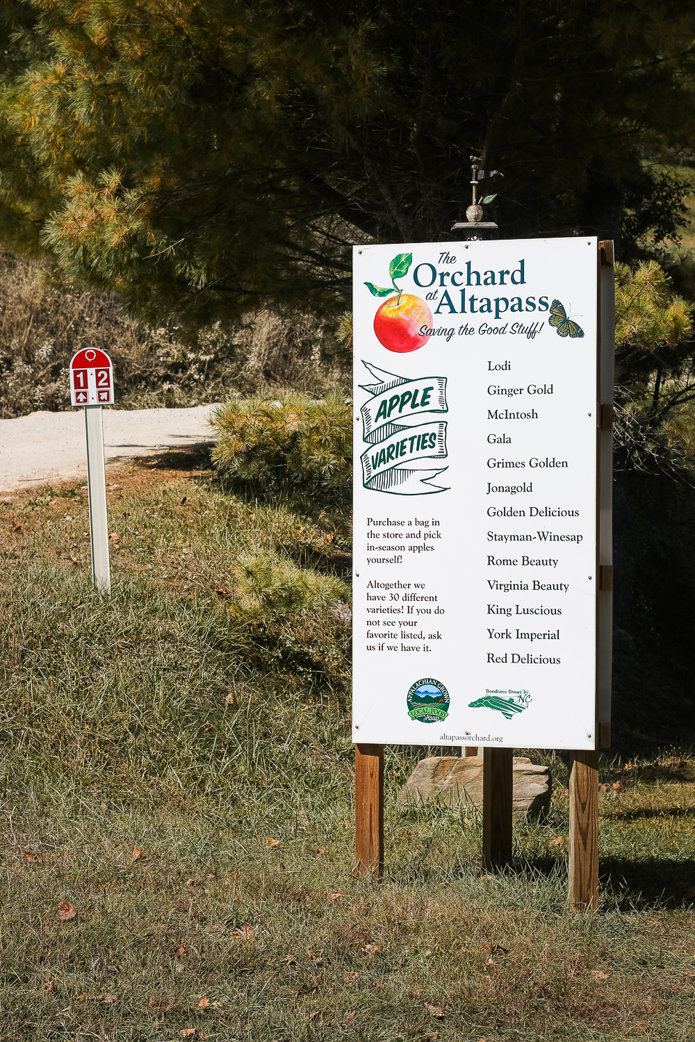 apple-orchard-nc-1