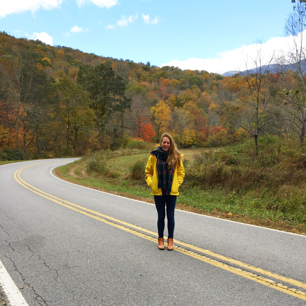 north carolina road