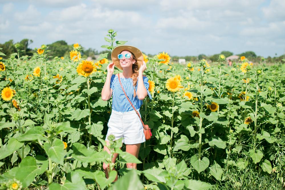 mims_sunflower_maze-33