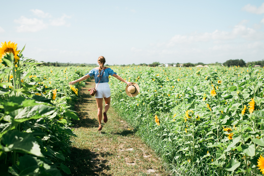 mims_sunflower_maze-8