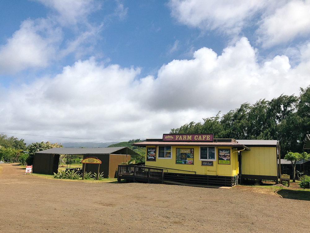 The Ultimate Oahu Travel Guide for the Adventurer - Kahuku Farms North Shore Oahu | Sunshine Style