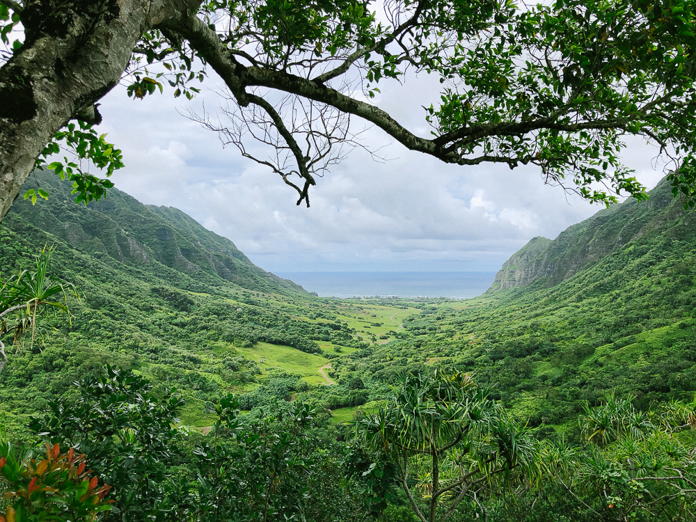 The Ultimate Oahu Travel Guide for the Adventurer - Kualoa Ranch | Sunshine Style