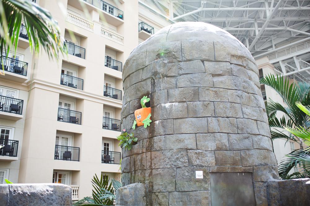 Recap of Gaylord Palms Orlando, Florida Day Trip - Sunshine Style, Florida Fashion, Travel and Lifestyle Blog