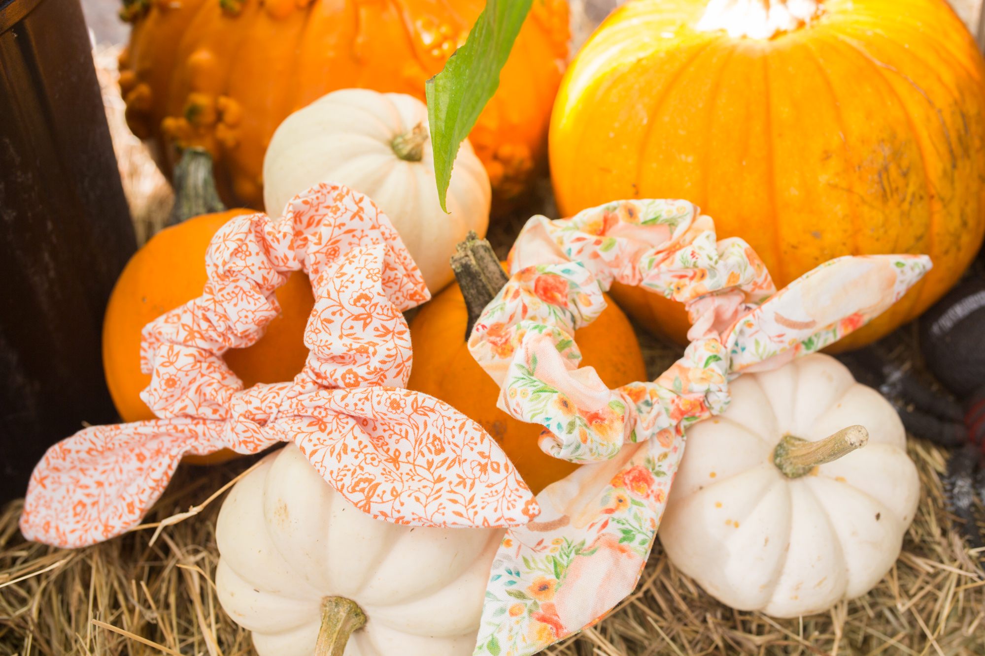 Pumpkin Patch / Pumpkin Fall Scrunchie / Bow Scrunchie / Fall Outfit Women / Fall Outfit Ideas Casual / Fall Fashion Outfits / Fall Style - Sunshine Style - A Florida Fashion and Lifestyle Blog by Katie